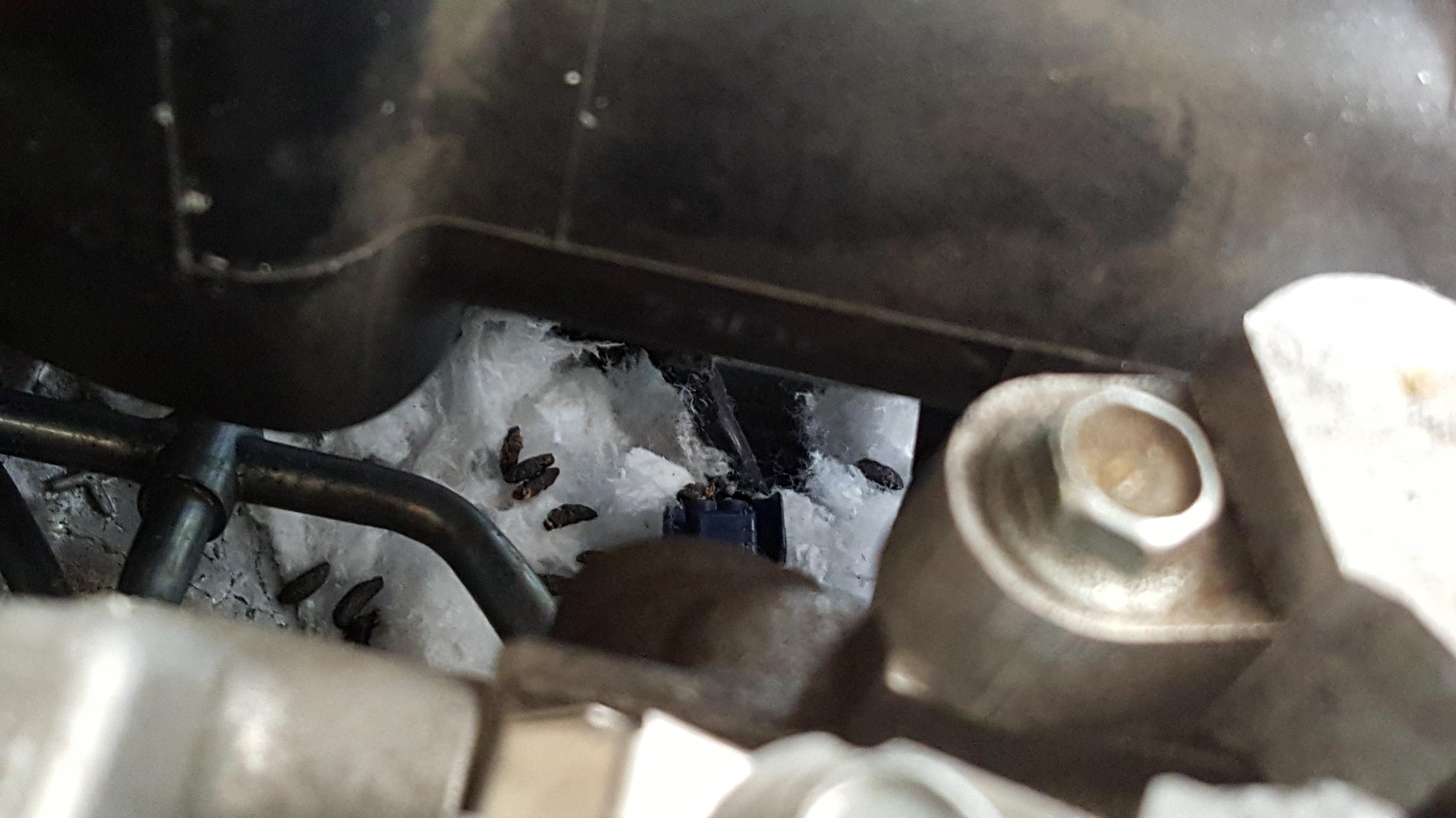 Knock Sensor Location 3 6l Engine - Subaru Outback