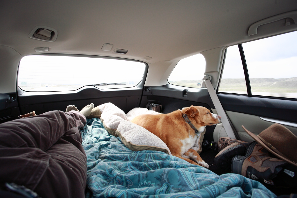 Cargo Mat That Covers Area When Seats Are Down Subaru