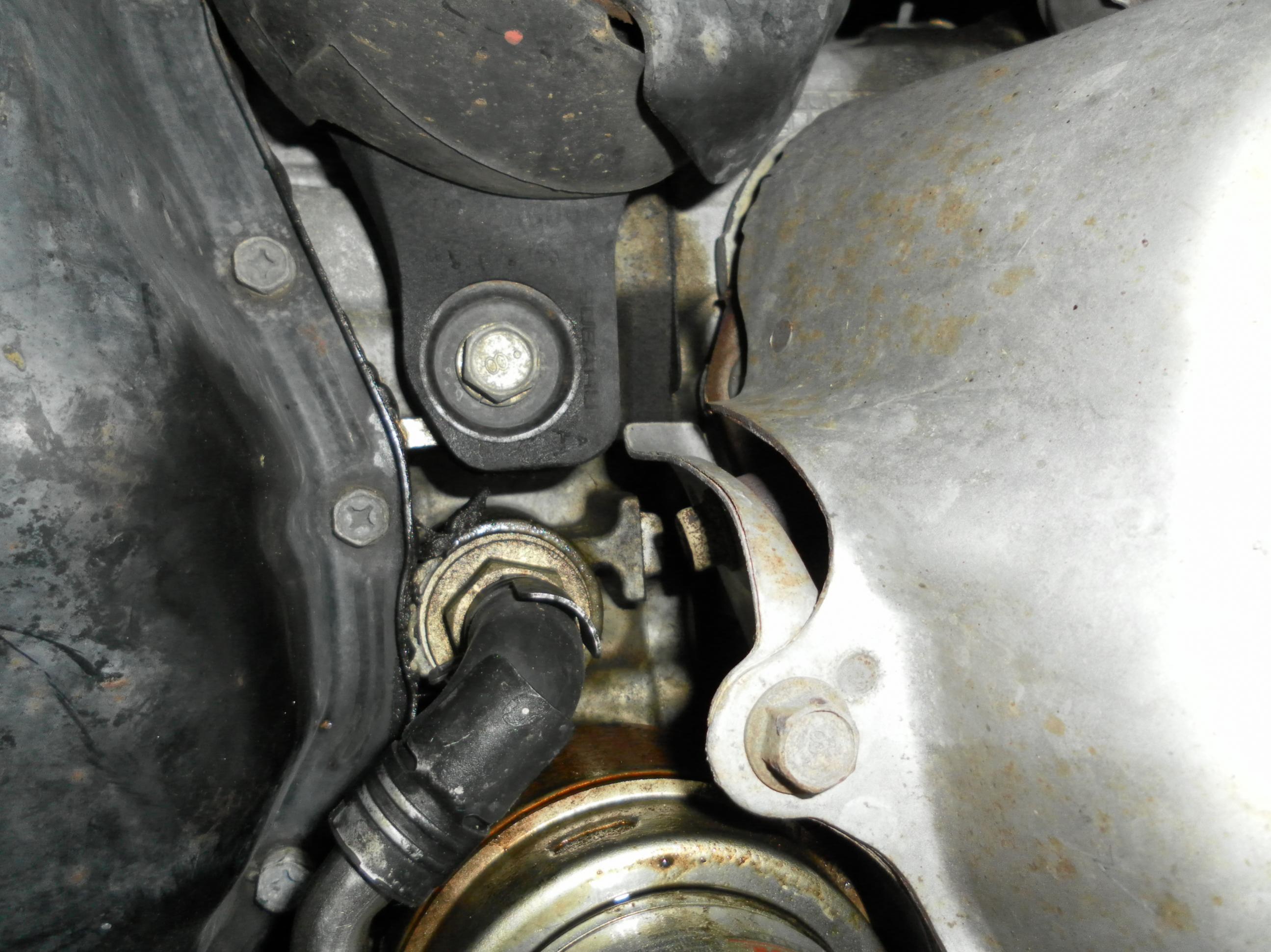 D Oil Cooler Gasket Head Gasket Sam on Engine Coolant Leak