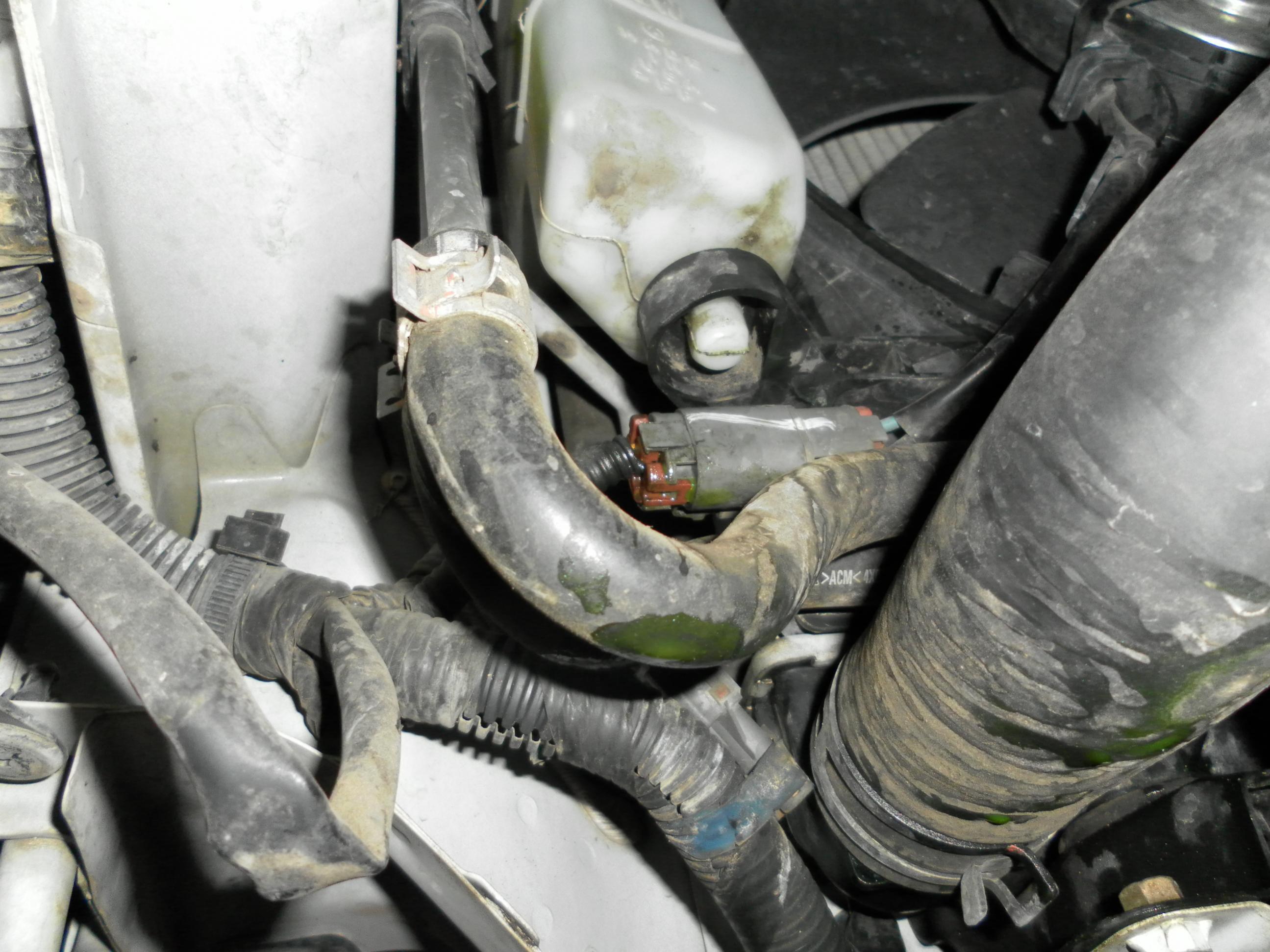 Oil Cooler Gasket Or Head Gasket Subaru Outback