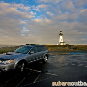 Outback at Yaquina Head